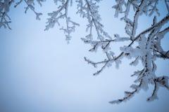 与早午餐的冬天背景在蓝色 库存图片