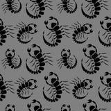 与昆虫的无缝的传染媒介样式,与特写镜头蝎子的黑暗的混乱背景 免版税库存图片