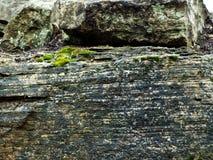 与明亮地色的青苔的岩石面孔 库存照片