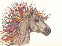 与明亮的五颜六色的鬃毛的美丽的马 由铅笔的Drawning 特写镜头 库存照片