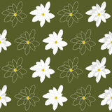与明亮的白色木兰花的无缝的样式在湿软的绿色背景 免版税库存图片