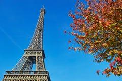 与明亮的秋叶的埃佛尔铁塔在蓝天 库存照片