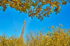 与明亮的秋天黄色叶子的埃佛尔铁塔 免版税库存图片
