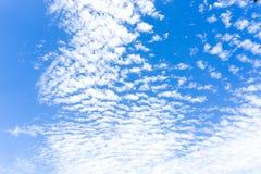 与明亮的蓝天的镇静风 在天空的一朵小云彩 免版税库存图片