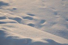 与明亮的雪漂泊的自然冬天背景 库存照片