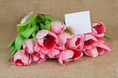 与明信片的几桃红色郁金香在麻袋布 免版税库存照片