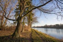 与易北河的自然风景 图库摄影