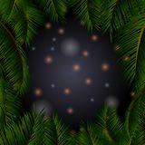 与星的夜空在棕榈树框架 免版税库存图片