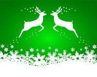 与星,在一绿色backgroun的雪花的驯鹿 库存图片