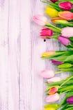 与春天五颜六色的郁金香的木背景 免版税库存图片