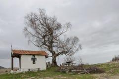 与春天令人尊敬的桦树和老教堂的美好的风景,位于Plana山 免版税图库摄影
