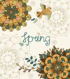 与春天字法的自然花卉背景 免版税库存照片