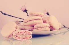 与春天的减速火箭的葡萄酒样式桃红色macarons小蛋糕曲奇饼开花 库存图片