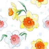 与春天的无缝的样式开花水彩 库存照片