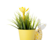 与春天花的复活节兔子鸡蛋 免版税库存图片