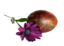 与春天花的复活节彩蛋 免版税库存图片