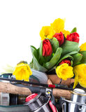 与春天花的钓具 库存图片
