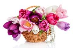 与春天被隔绝的郁金香花五颜六色的花束的篮子  免版税库存图片