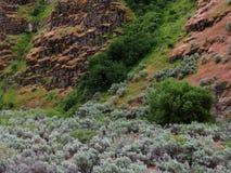 与春天绿色的坚固性岩石倾斜 免版税库存图片