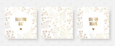 与春黄菊和激动人心的行情的花卉金黄卡片 库存照片