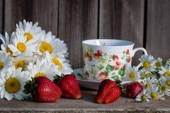 与春黄菊和茶杯的草莓 库存照片