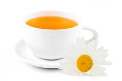 与春黄菊的清凉茶 库存照片