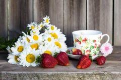 与春黄菊的草莓 库存图片
