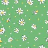 与春黄菊花的无缝的花卉样式 皇族释放例证