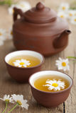 与春黄菊花的绿茶 图库摄影