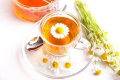 与春黄菊、开花的植物和蜂蜜的健康清凉茶在白色背景 免版税库存图片