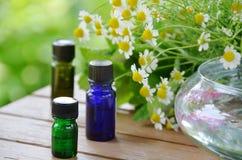 与春黄菊的芳香疗法油 库存图片