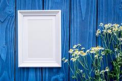 与春黄菊花的夏天在蓝色木书桌背景顶视图嘲笑的compisition和框架 库存图片