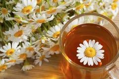 与春黄菊花的茶 库存照片