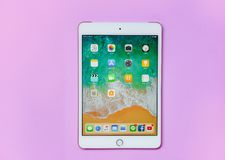 与显示屏前面的片剂计算机新的苹果计算机iPad微型人造白金颜色在桃红色背景 免版税库存图片