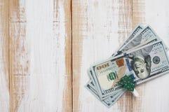 与晒衣夹的一百美元装饰了圣诞树 免版税库存照片