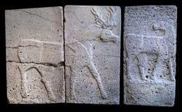 与晚赫梯期间鹿的古老石浅浮雕  免版税库存图片
