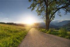 ?? 与晴朗的天空的风景与云彩和美丽的柏油路在晚上在夏天 免版税库存图片