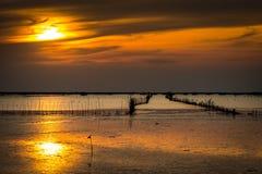 与最低水位水平,有干竹子的壳农场的海滨和 库存照片