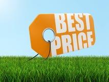 与最佳的价格的标签在草(包括的裁减路线) 库存图片