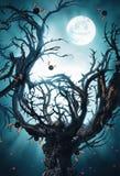 与月亮和棒的神秘的树 免版税库存图片