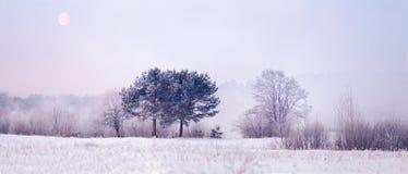 与月亮的冷的冬天早晨 库存图片