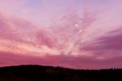 与月亮的桃红色天空 图库摄影