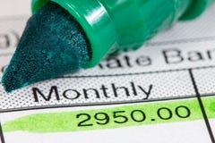 与月工资的工资单 库存照片