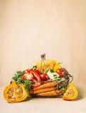 与有机收获菜和南瓜的篮子从庭院 秋天季节性食物 库存照片