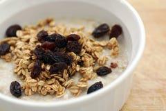 与有机格兰诺拉麦片和葡萄干的健康早餐燕麦粥粥 免版税库存照片