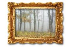 与有薄雾的森林的图象古老画框的 免版税库存图片