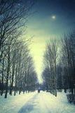 与朋友的冬天夜在公园 免版税库存照片