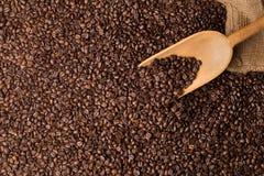 与服务匙子的咖啡豆整个银幕的topview 免版税库存照片