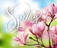 与木兰开花早午餐的春天文本与模糊的作用的 背景蒲公英充分的草甸春天黄色 向量 皇族释放例证