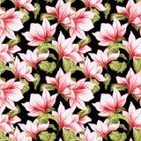 与木兰的无缝的样式在黑背景开花 库存例证